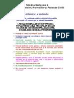 reguli_atac_aerian primarie s2.pdf