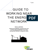 A Guide to Working Near the Electric Power Network