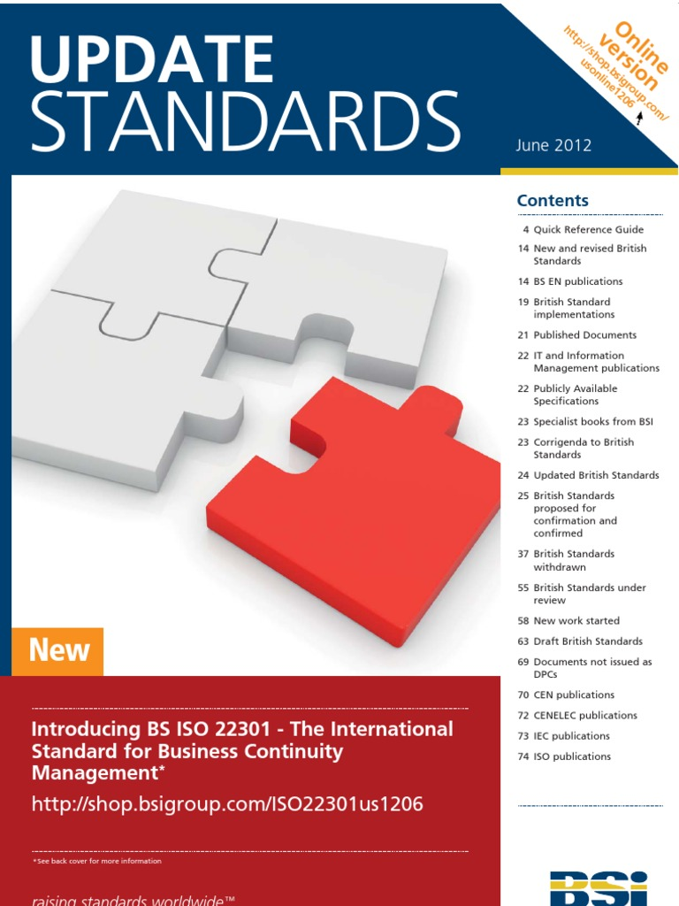 Guide for BSI   Expert   International Electrotechnical Commission