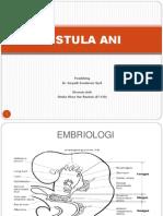 Fistula Ani (Sheila 07-138)