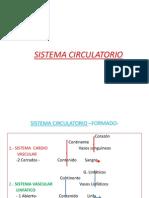 Clases de Histologia(2)