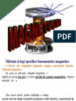 Prezentare Electromagnetism 4