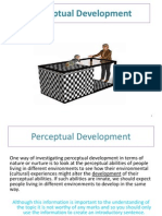Perceptual Development (Cross Cultural Studies)