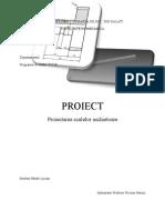 Proiect PSA Palade Lucian