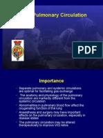 20459323 Pulmonary Circulation