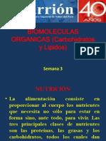 Semana 3. Carbohidratos y Lipidos