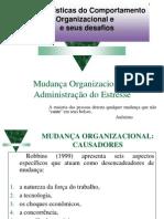 Comportamento Organizacional e Seus Desafios