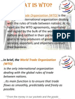 What is the WTO,eco.
