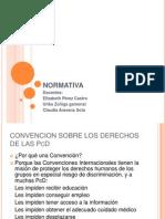 Convencion Derechos de Las Pcd