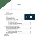 CUPRINS - Testarea Aplicatiilor Software. Studiu de Caz. Managementul Procesului Decizional