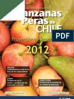Manzanas Peras Chile e
