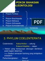 Fosil Coelenteratal