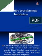 _A Vida Nos Ecossistemas Brasileiros