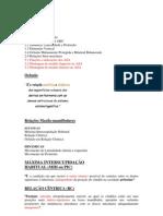 Articuladores 1.docx