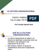 Exposicion Final Cultura