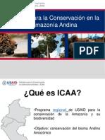 Iniciativa para la Conservación en la Amazonía Andina