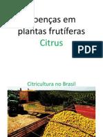 Doenças em frutíferas- Citrus
