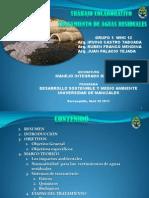Castro Irvingfranco Rubenpalacio Juanpresentacintrabajocolaborativog1wiki12 130429215828 Phpapp01