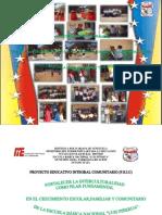 PEIC 2011-2012 E.B.N.LUIS PIÑERUA