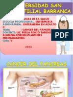 Diapositiva Cancer Del Pancreas