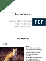 Los Animales Noelia