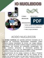 Acidos Nucleicos M y M