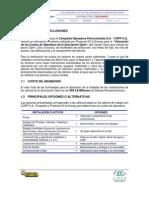 Informe Opón Final Preliminar