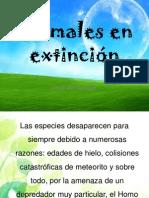 Animales en extinción_1