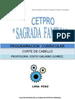 Programacion Corte de Cabello-2013 (1) (1)