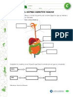 Articles-22973 Recurso PDF