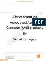 Autoclaved Aerated Concrete (AAC) blocks Project - Brief Report