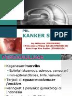 PBL CA CX