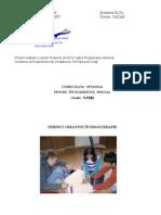 Tehnici Creative in Ergoterapie (1)