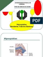 Hipospádias revisão