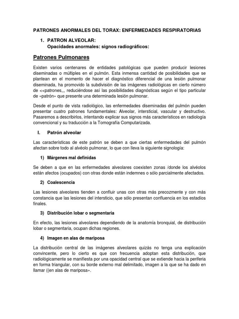Lujoso Anatomía Segmentaria De Los Pulmones Embellecimiento ...
