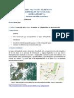 Quim Ambiental Informe