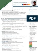 cv business development europe en