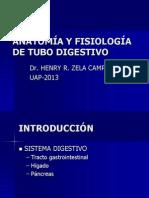 ANATOMÍA Y FISIOLOGÍA DE TUBO DIGESTIVO 2013