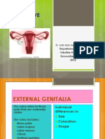 Female Reproductive Anatomy Translete