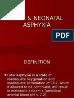 45-Fetal & Neonatal Asphyxia