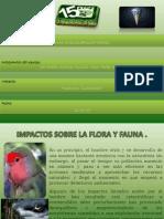 impactossobrelafloraylafauna-100219155545-phpapp02