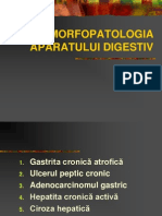 Morfopatologie LP 3 sem II 2013