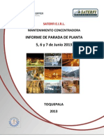 Informe Pdp2013 Saterfi - Copia