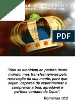 Negcios Luz Da Bblia.pps