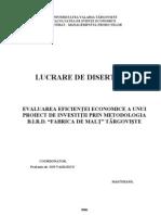 42240917 Evaluarea Eficientei Economice a Unui Proiect de Investitii Prin Metodologia BIRD Fabrica de Malt Targoviste