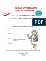 I.F Monografia Completa Rivera Flores