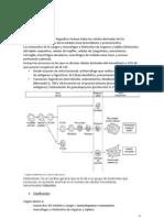 Histiocitosis