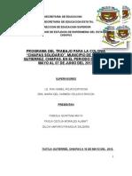 Programa de Trabajo de Chiapas Solidario Final