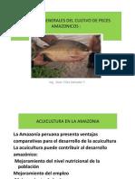 Aspectos Generales Del Cultivo de Peces Amazonicos 2012