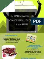 II Habilidades de Conceptualizacion - Copia